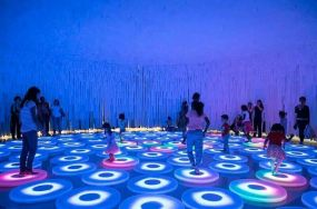 Interactive Floor & Wall Tiles